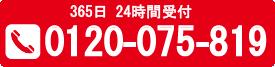 0120-075-819