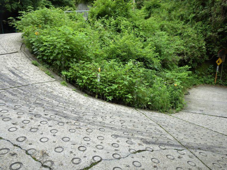 大阪府のバイクツーリングおすすめスポット3選